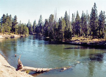 Upper Deschutes River Fly Fishing